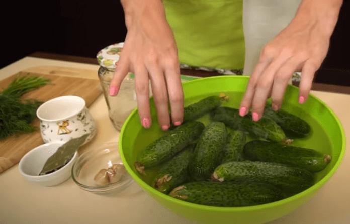 Малосольные огурцы в пакете быстрого приготовления: рецепты хрустящих огурчиков