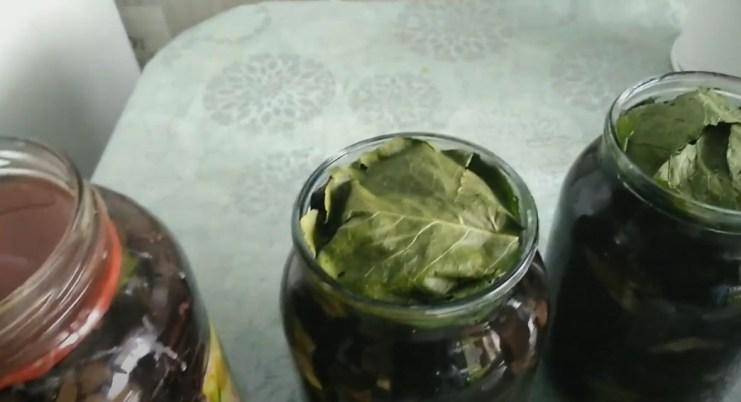 Как солить грузди в домашних условиях - простые рецепты